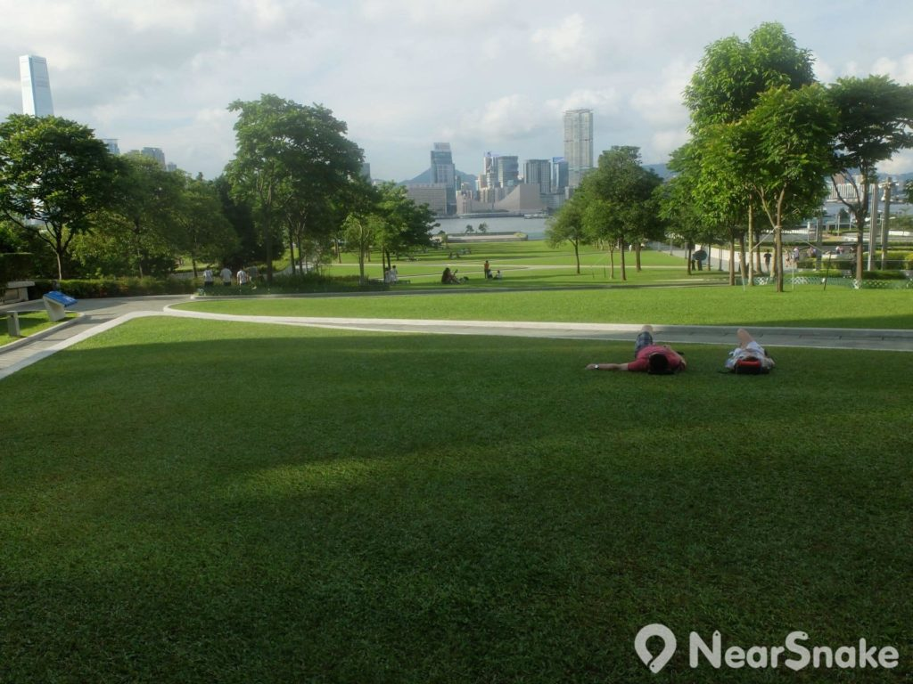 夏日炎炎,添馬公園有一大片綠油油的草地,最適合睡一睡。