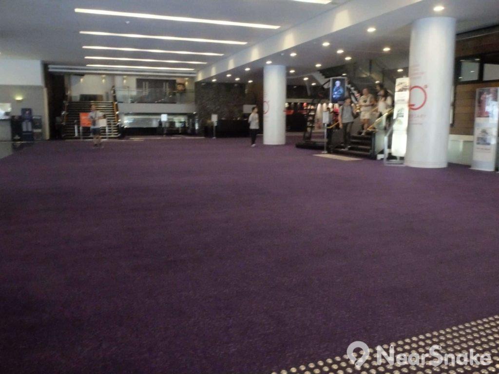 香港大會堂低座大堂極為寬廣,專供人在此等入場觀看音樂會、話劇或其他表演藝術。