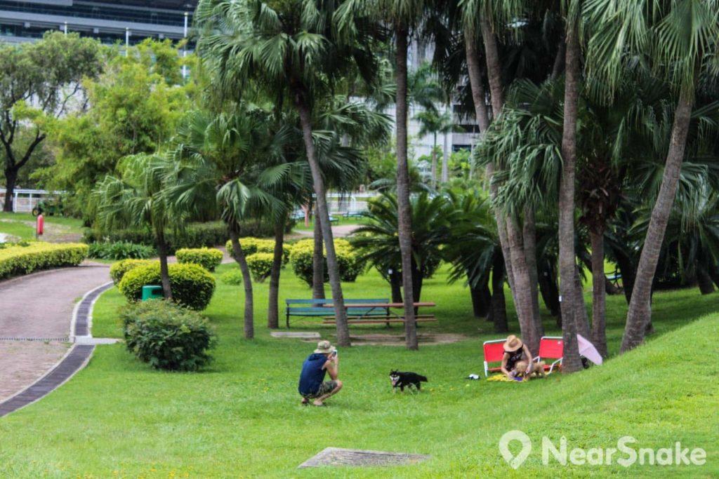 來到彭福公園,找個樹蔭在草地席地而坐,自成一角休閒小天地。