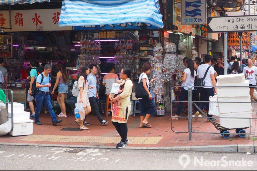 金魚街其實是指從旺角道至水渠道的一段通菜街。