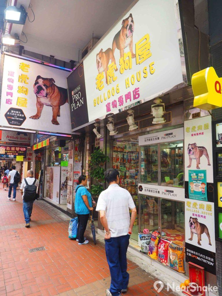除了水族店之外,近年金魚街上亦進駐不少寵物店,由貓狗至爬蟲類均應有盡有。