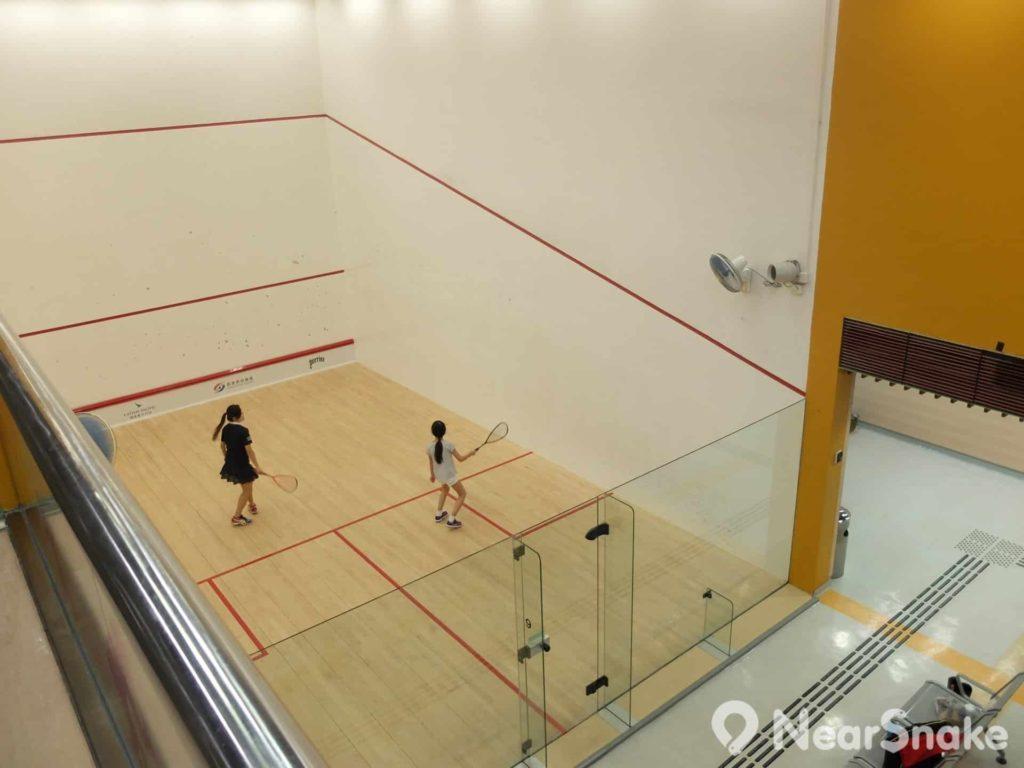 香港壁球公開賽與很多國際賽事均在香港壁球中心舉行。