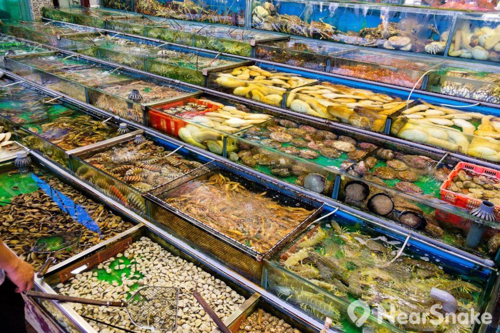 西貢海鮮街上的餐館門前設有大大小小的魚缸,以供顧客挑選不同款式的海鮮。