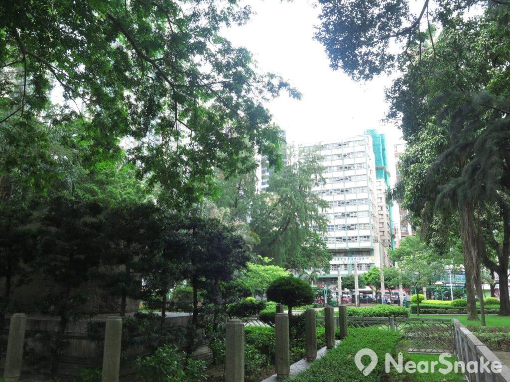 宋王臺遊樂場位處鬧市之內,於附近坐擁難得樹林蔭,為九龍城區居民帶來城市中的一片綠洲。