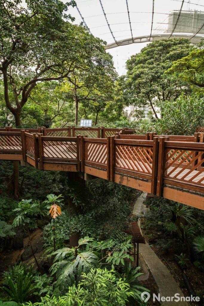 尤德觀鳥園內架設了有一條高架行人道,不但可讓人在不同的高度觀賞園內雀鳥,還可飽覽園內山谷全景。