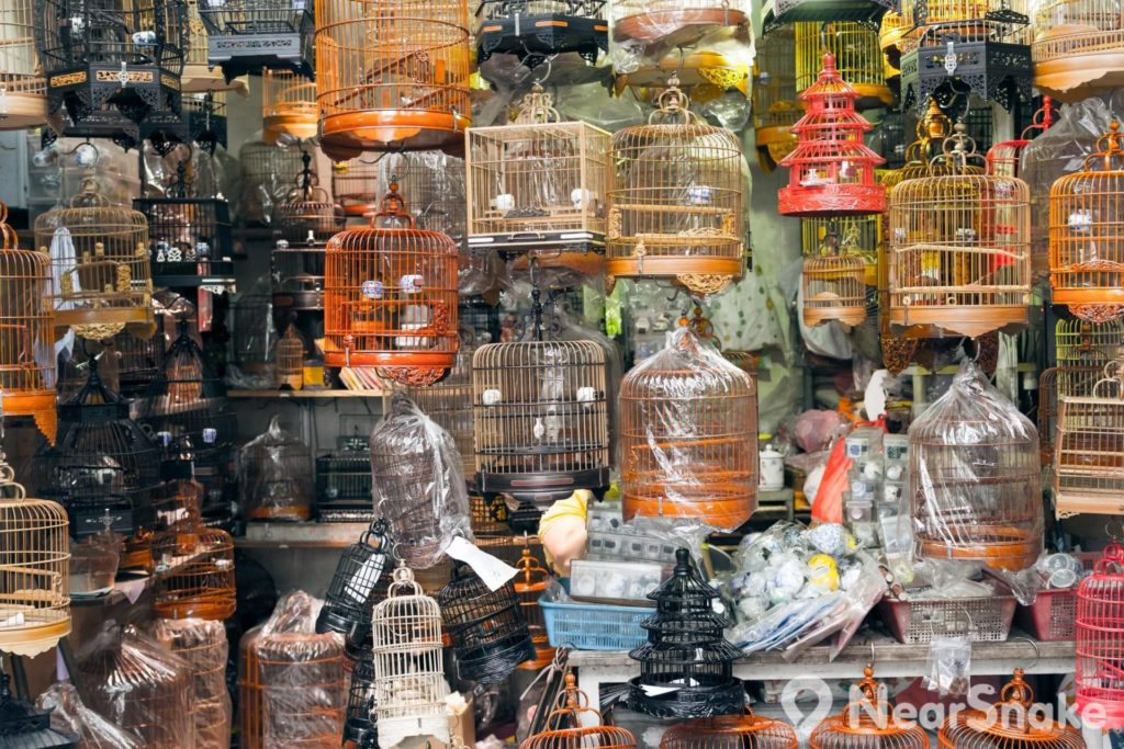 園圃街雀鳥花園: 鳥籠的造工相當精緻,有木製或竹製選擇,散發著獨特的中國色彩,因此對外國遊客富有新鮮感。