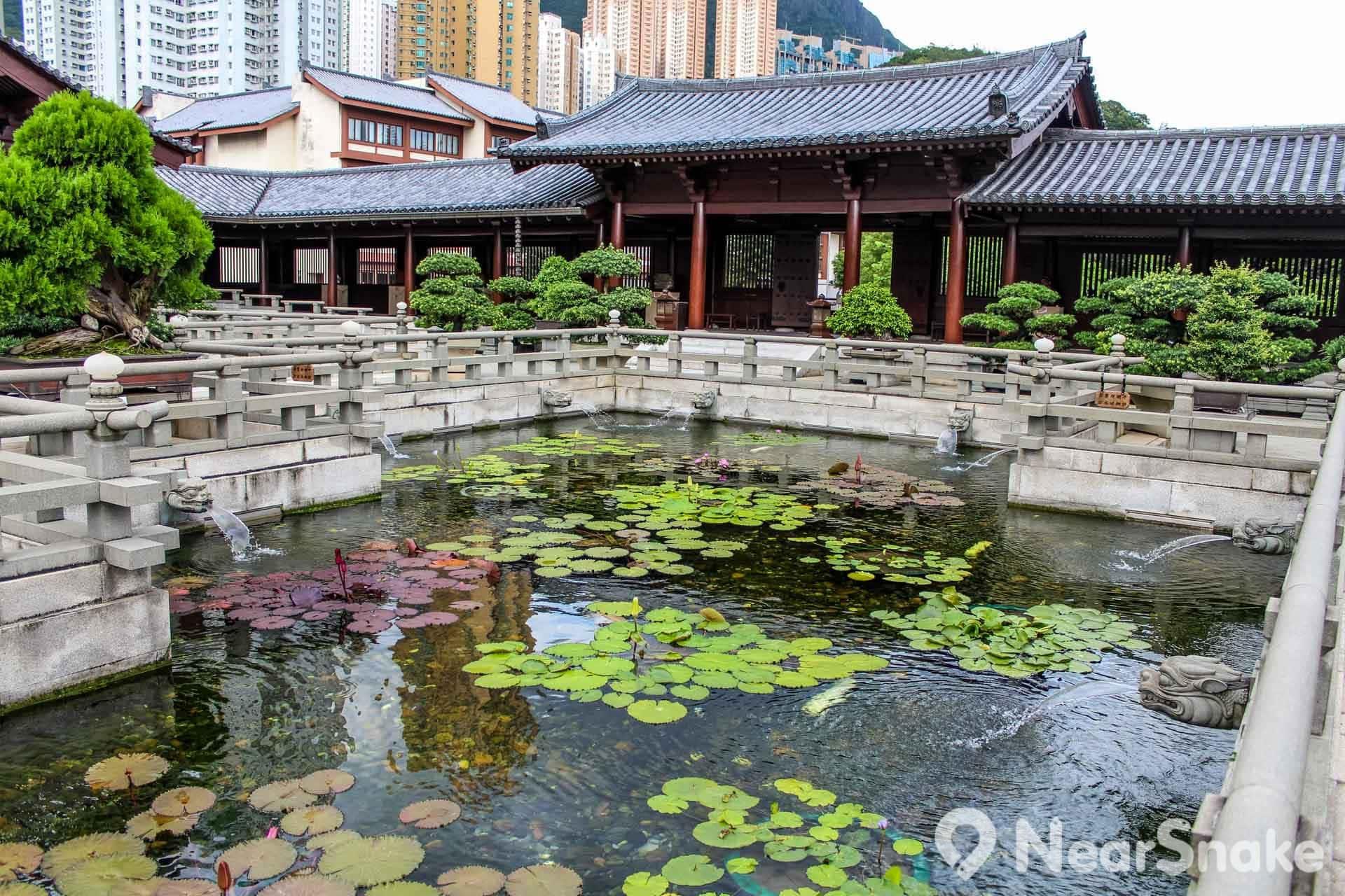 流水潺潺的蓮花池為寺廟增添一份生氣。