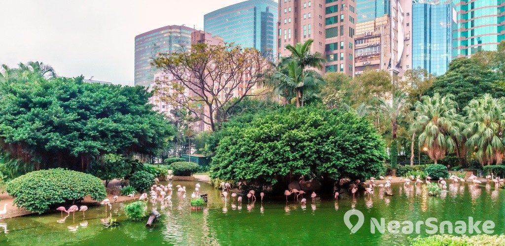 九龍公園 新外貎一覽