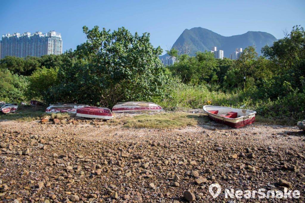 小船或會被擱置在渡頭灣村海邊,任由吹風雨打。