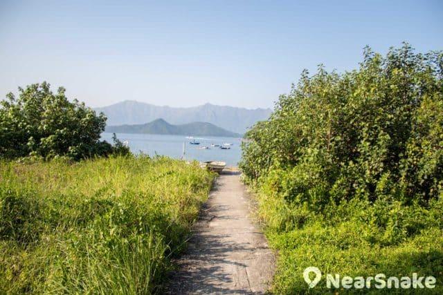 渡頭灣村有小徑有通往海邊的分叉路口,可在此稍作歇息,看看風景。