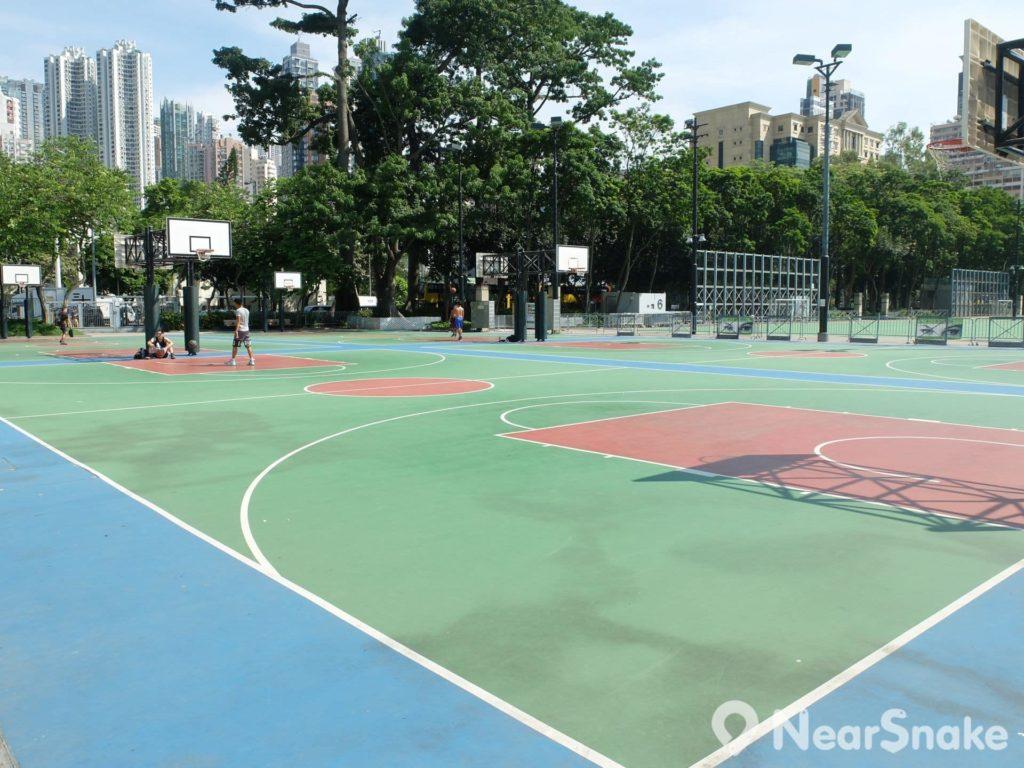 維園擁有 4 個籃球場,經常舉行籃球比賽,也有街籃 3 on 3 比賽進行。不過,地面所繪的長方形禁區,雖符合 2010 年國際籃球總會 F.I.B.A 所重新制定,但卻是缺少了三分底線部分,曾被批不符國際標準。
