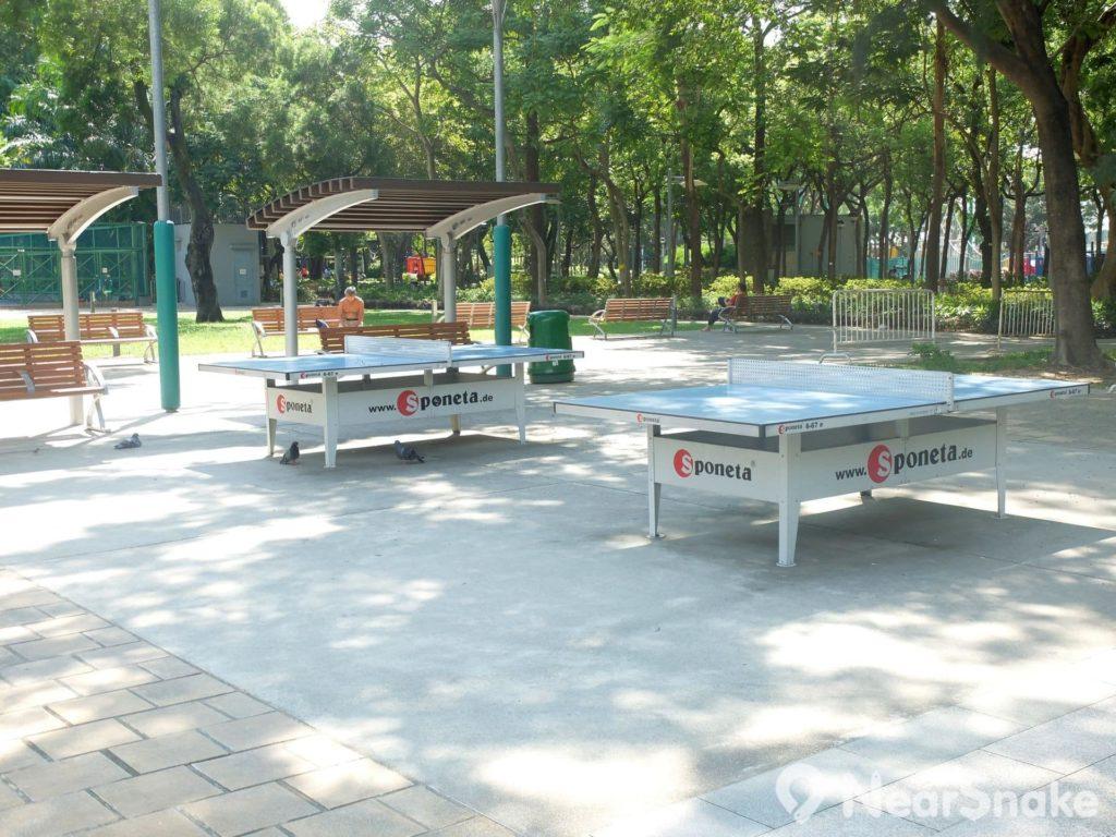 維園內的乒乓波檯放置在樹蔭下的空地,大家只要自攜乒乓球和球板,即可在此一顯身手。