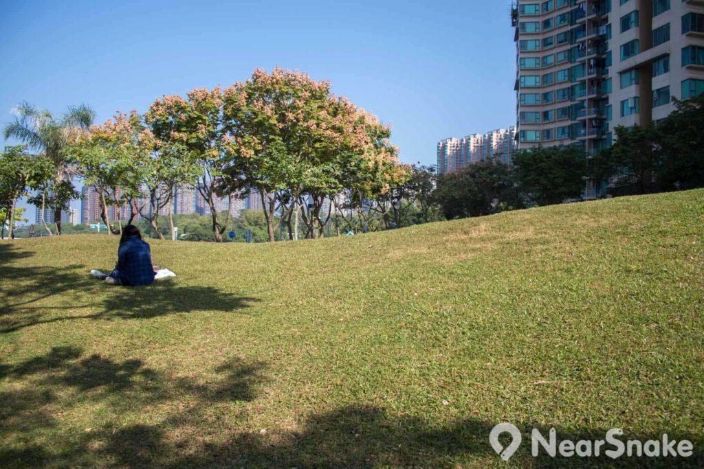 靜靜地找個樹蔭,在草地看本書,也是一種小確幸吧。
