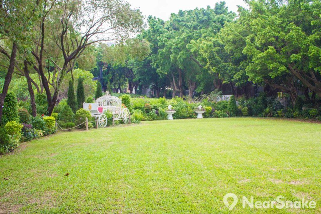 大埔海濱公園是康文署指定六個可舉行婚禮的康樂場地之一,有草地供新人行禮。