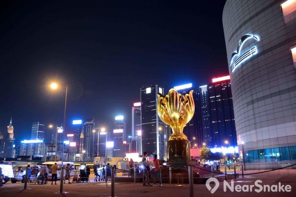 晚上欣賞金紫荊廣場上的「永遠盛開的紫荊花」貼金銅雕,別具一番意境。