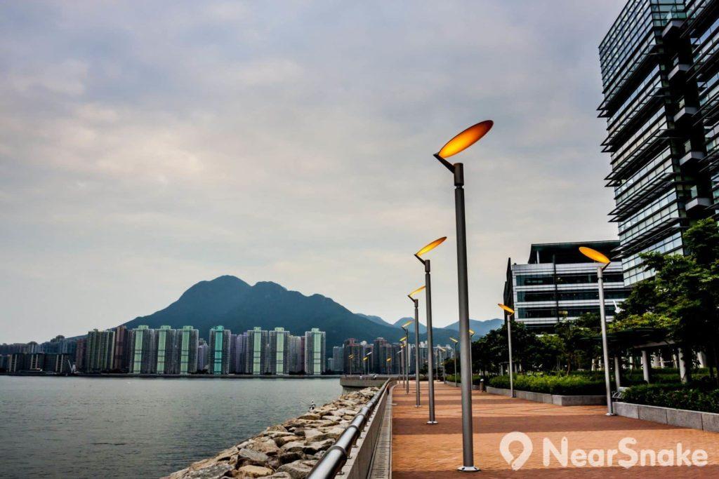香港科學園座落於大埔吐露港海濱,地理格局可說是背山面海。