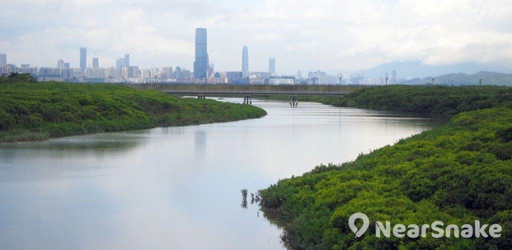 香港濕地公園 新外貎一覽