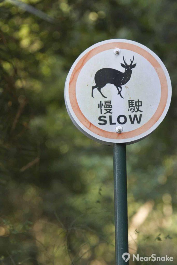 嘉道理農場內獨有的路牌,提醒駕駛者留意隨時有動物出沒。