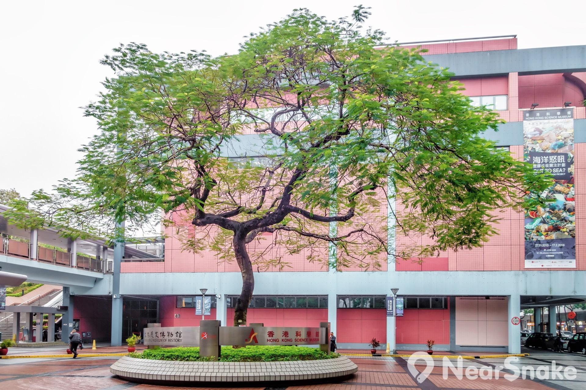 香港歷史博物館與香港科學館相對,當可一天把兩個博物館同遊。