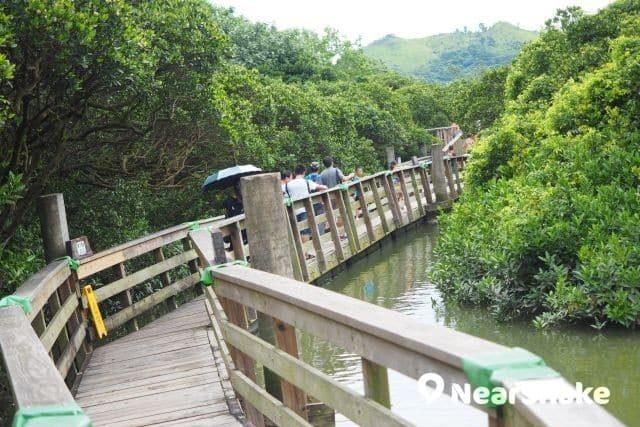 香港濕地公園