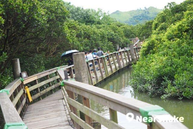 香港濕地公園 新縮圖