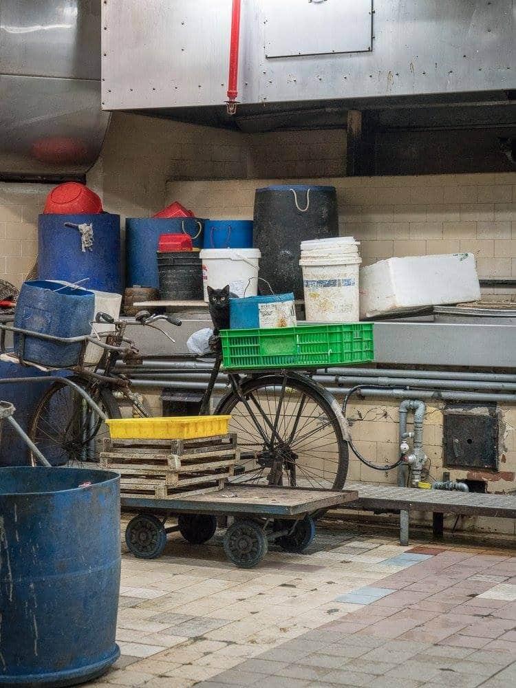 街巿貓喜歡匿藏在不同地方,攝影師 Marcel 覺得老店也是作品主角,骯髒繁忙的景象顯得更有質感,「messy is good」。