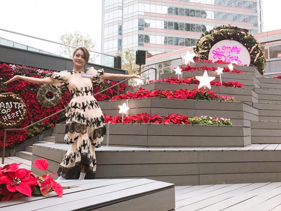 新都會廣場在其露天廣場四周以過萬朵紅色聖誕花鋪成花海。