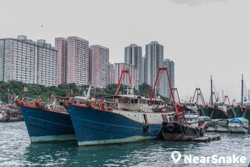 香港仔避風塘內泊滿了大型漁船。