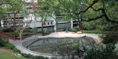 蒙國平花園