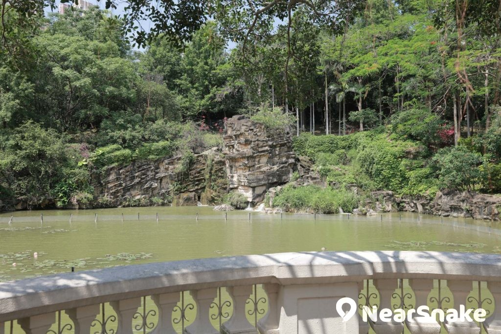 青衣公園的人工湖令景致變化更為豐富。