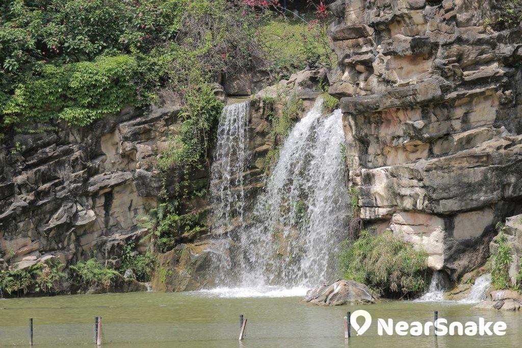 青衣公園內有人工瀑布,增添不少特色。
