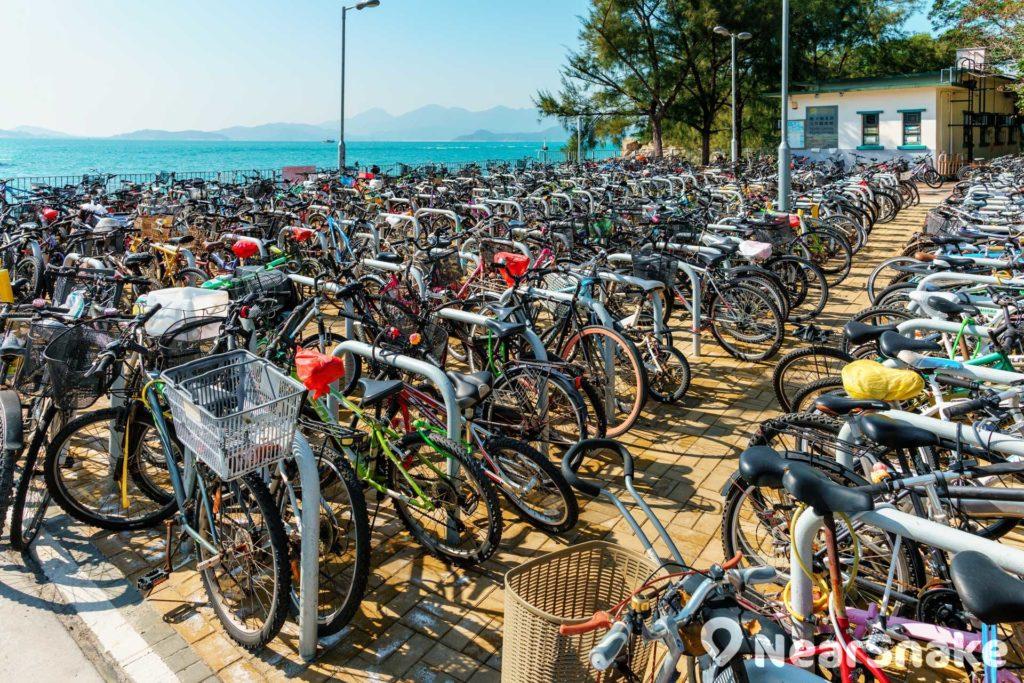 榕樹灣碼頭一出便會見到「單車陣」,停泊單車數量之多蔚為奇觀。