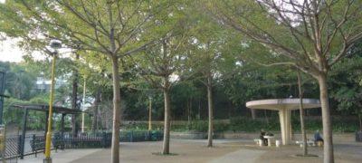 界限街花墟公園