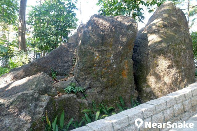 花墟公園另一特色,是隨處可找到極大塊的自然巨石。
