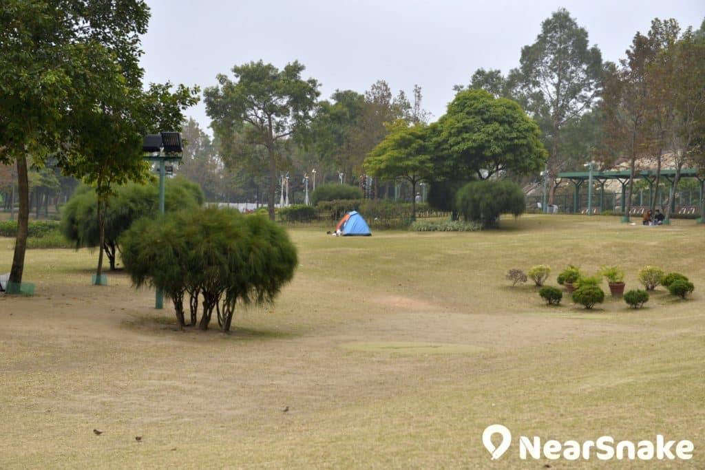 佐敦谷公園的大草地可容許不同類型活動進行,除看書、享受太陽浴、奔跑外,更有人會帶帳篷在此野餐呢!