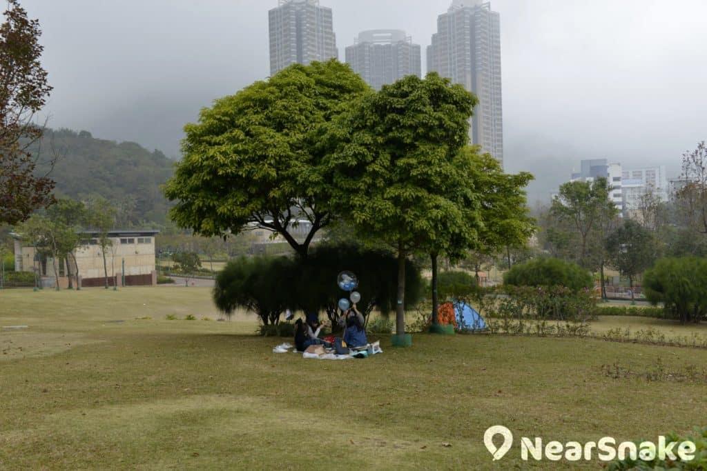 正所謂「大樹好遮蔭」,佐敦谷公園草地上也種植了不少有枝葉茂密的大樹,大家只要在樹下鋪上野餐布,再擺上自備美食,即可享受在市區野餐的樂趣。