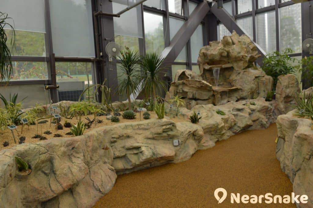 佐敦谷公園溫室主要栽種著各種仙人掌,稱之為仙人掌館可能更貼切。