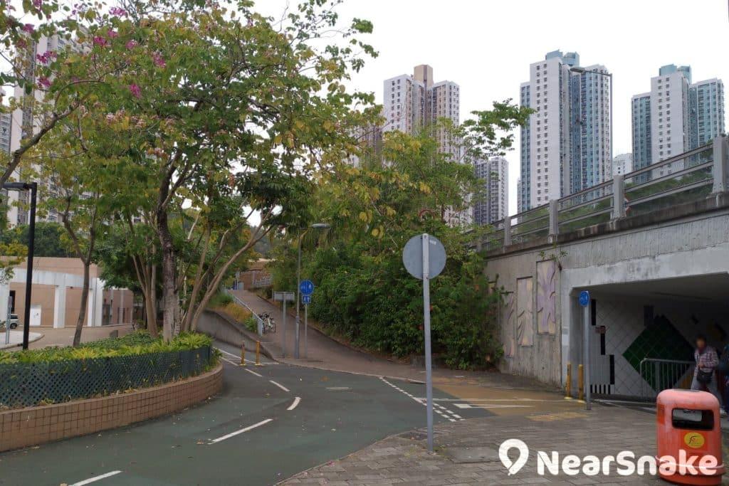 這裡是將軍澳游泳池後方的分岔路,往前走便能抵達王余家潔紀念小學旁的紅葉區,往右走穿過橋底就是常寧遊樂場旁的那紅葉單車徑。