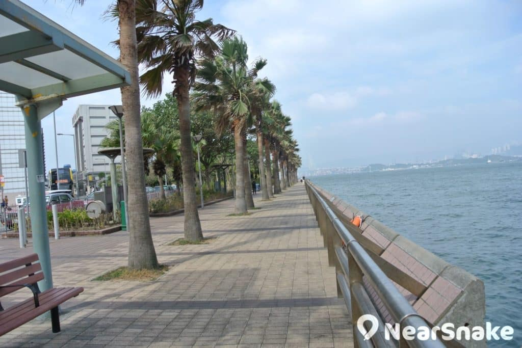 相比中環段,中西區海濱長廊-上環段種植了有不少樹木,感覺更怡人清新。