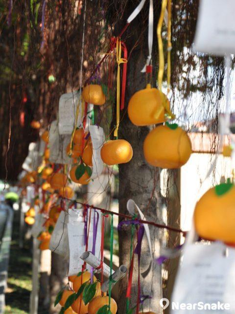 林村許願樹寶碟現已改為繫上塑膠橘子,以減輕許願樹的負荷。