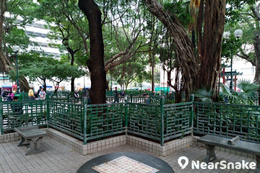 雖無官方解釋,但油麻地天后廟在「榕樹頭」公園內被大量榕樹包圍,得名之因也很明顯吧!