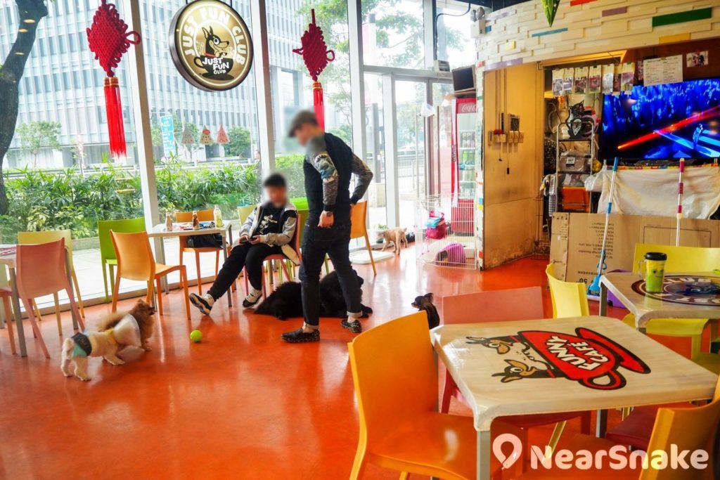 Mikiki 商場開設了狗cafe「吉之芬給」,可讓狗主帶同毛孩入內休憩耍樂,亦有駐場狗店長陪玩。