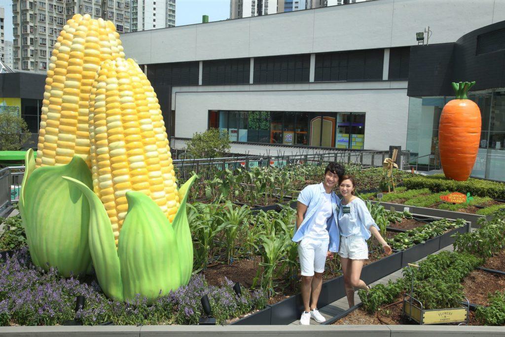 新都會廣場 5 樓空中花園被打造成都市農莊,種植超過 40 種農作物,包括不同種類的蔬果花草。