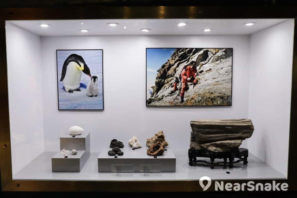 賽馬會氣候變化博物館的展品,如動植物實物、複製品、標本、工具及各式影像等,絕大部分為李樂詩所捐贈。