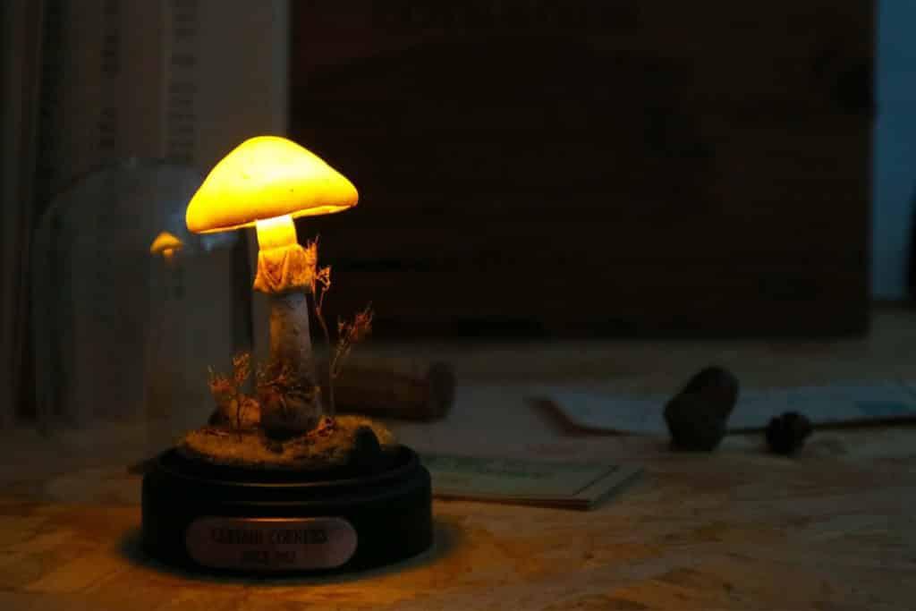 大家在 illuminate! 光影遊樂園工作坊可自己動手製作出獨一無二的紙蘑菇燈。