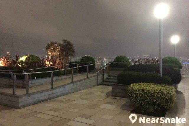 入夜後的 The One 空中花園,在夜幕映襯下園林景觀變得更加優美。