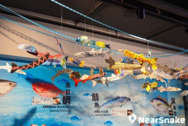 黃埔新天地內的裝修以日式風格為主,並設有多個體驗區,讓訪客了解不同的魚類。