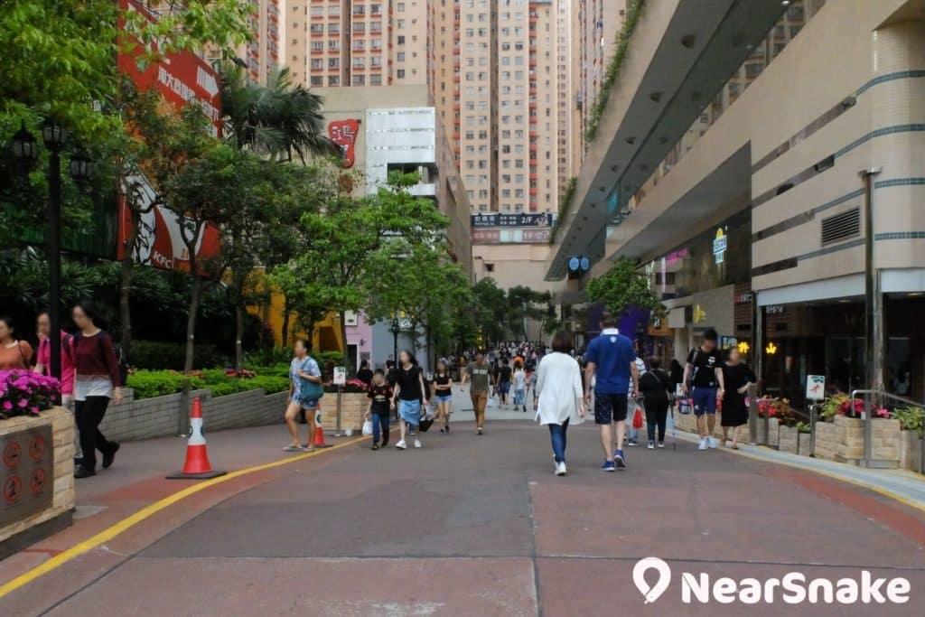 淘大商場設有一條戶外步行街,也方便淘大花園居民出入。