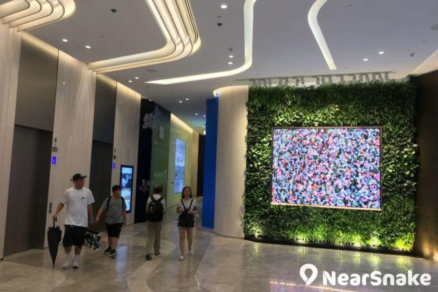 利園三期的電梯大堂掛著一塊大型顯示屏幕,播放著繁花似錦的影像,令途人不禁駐足觀看。