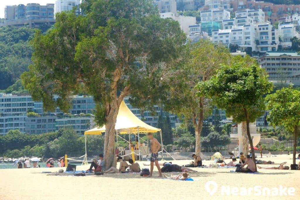 淺水灣沙灘上栽種了不少樹木,大家定可找到陰涼位置。